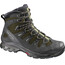 Salomon Quest 4D 2 GTX Trekking Shoes Men iguana green/asphalt/dark titanium